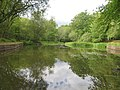 Ferny Crofts pond.jpg