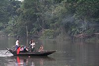 Ferry boat in the Sundarbans