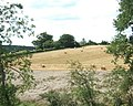 Field after Baling - geograph.org.uk - 520506.jpg