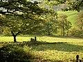 Field boundary, Shibden Dale, Northowram - geograph.org.uk - 589375.jpg