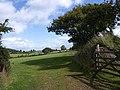 Field near Cranbrook - geograph.org.uk - 1478498.jpg
