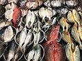 Fish market in Tamsui, Taiwan.jpg