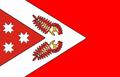Flag of Sovetsky District (Mari El).png