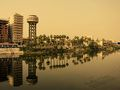 Flickr - HuTect ShOts - Nile River ^ Palms - El.Mansoura - Egypt - 14 05 2010.jpg