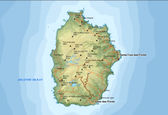 Flores area map-en.png