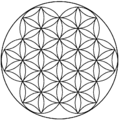 Flower of life-2.5level.png