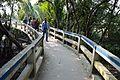 Footbridge - Sundarban Biodiversity and Interpretation Area - Taki - North 24 Parganas 2015-01-13 4662.JPG