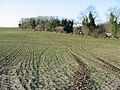 Footpath across the fields at Little Mongeham - geograph.org.uk - 634294.jpg