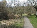 Footpath by the Cuiken Burn - geograph.org.uk - 1225522.jpg