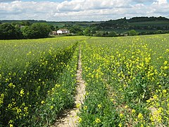 Footpath to Eynsford - geograph.org.uk - 1314950.jpg