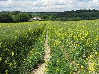 Eynsford - Image: Footpath to Eynsford geograph.org.uk 1314950