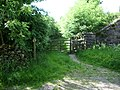 Footpath to Middlefell - geograph.org.uk - 1021669.jpg