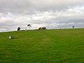Footpath to Slays Wood^ - geograph.org.uk - 323386.jpg