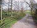 Footpath to Woodbridge - geograph.org.uk - 371192.jpg