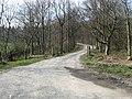 Forestry road near Bonnington - geograph.org.uk - 1233480.jpg