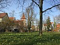 Frühling 2015. Schwaneninsel Waiblingen. - panoramio.jpg