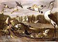 Franz de Hamilton - River landscape with birds.jpg
