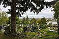 Friedhof Ober St Veit.jpg