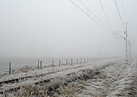 Frost fog.jpg