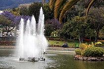 Funchal - Ostersonntag im Park IMG 2106.JPG