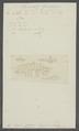 Gammarus spinicarpus - - Print - Iconographia Zoologica - Special Collections University of Amsterdam - UBAINV0274 098 02 0019.tif