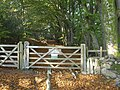 Gate into Yarner Wood - geograph.org.uk - 2134547.jpg