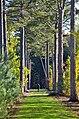Geklasseerd natuurgebied De Stropers.jpg