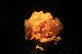 Gfp-wulfenite-from-san-francisco-mine.jpg