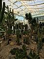 Giardino della Biodiversità, Serra Arida.jpg