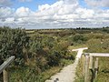 Gibraltar Point - geograph.org.uk - 1496016.jpg