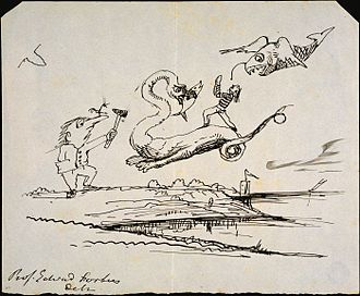 Edward Forbes - Drawing by Forbes of geologist Gideon Mantell engaged in battle with flying dinosaurs on the English coastline, c. 1830s