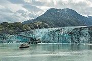 Glaciar Lamplugh, Parque Nacional Bahía del Glaciar, Alaska, Estados Unidos, 2017-08-19, DD 113.jpg