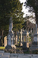 Glasnevin Cemetery, officially known as Prospect Cemetery.jpg
