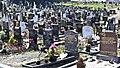 Glasnevin Cemetery (4513019888).jpg