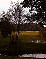 Gmina Kobiele Wielkie, Poland - panoramio (13).jpg