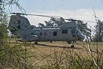 Golf Company Live Fire Field Exercise 150411-M-ED561-062.jpg