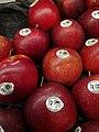 Grójeckie (apple) in Poznan (2).jpg