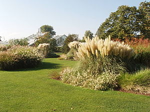 Grass Garden at Kew. Kew Gardens are mainly la...