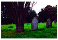 Graves locksbrook.jpg