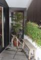 Green wall in edge tsubo-niwa Kyoto machiya house 2013.png