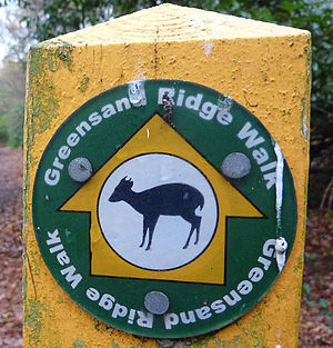 Greensand Ridge Walk - Waymarker denoting the route of the Greensand Ridge Walk