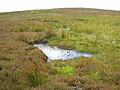 Grouse moor above Sharberry Gill - geograph.org.uk - 510458.jpg