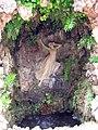 Gruta Eco y Narciso.jpg