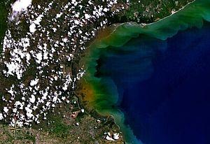 Gulf of Panama mangroves - Satellite view of Gulf of Parita, fringed by mangroves