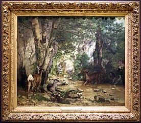 Running deer in Plaisir-Fontaine creek
