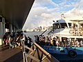 HK TST 尖沙咀 Tsim Sha Tsui 梳士巴利花園 Salisbury Garden public piers 維多利亞港 Victoria Harbour 黃昏 evening June 2020 SS2 11.jpg