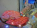 HK Wan Chai Road 灣仔道 night 金兜記海鮮菜館 Kam Dau Kee Seafood Restaurant fish pool Dec-2013 red fishes.JPG