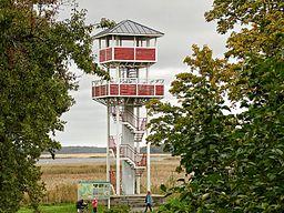 Haapsalu Linuvaatlustorn