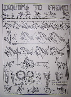 Spade bit (horse) - A poster illustrating the process of training a spade bit horse