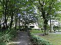 Hamm-Heessen, Hamm, Germany - panoramio (104).jpg